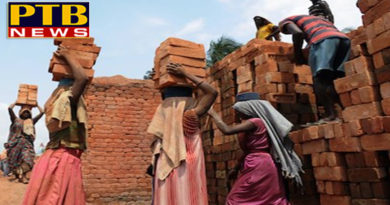 PTB Big Breaking News national government looking to ban brick kiln asks cpdwd to file report