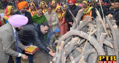 "PTB News ""शिक्षा""Lohri festival celebrated at lyalpur Khalsa College Jalandhar"