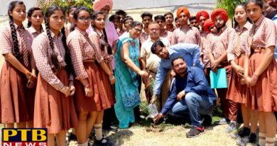 PTB News Plantation Drive by Income Tax Department at St Soldier Divine Public Schools