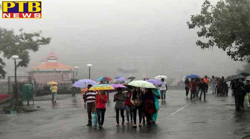 shimla himachal weather rainfall recorded in dharamshala and other areas