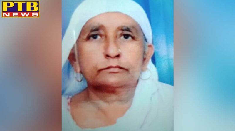 PTB Big Crime News bathinda Son killed his mother Punjab