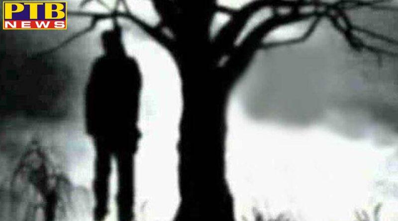 Punjab hanging with tree jalandhar nakoder road police suicide unknown dead body Jalandhar