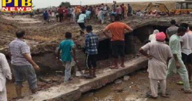 punjab gaushala roof collapsed due to rain and cow dabbed in bathinda of punjab