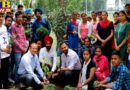 St. Soldier Engineering Students Plantation Jalandhar