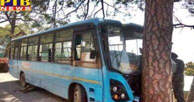 himachal pradesh dharamsala now hrtc bus collided with tree in himachals kangra
