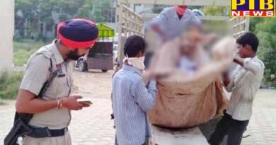 ludhiana brother extracts dead body of sister from grave in suspect of her murder