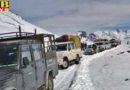 himachal pradesh yellow alert in himachal rain and snowfall alert issued