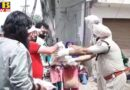 ACOS, an association of businessmen associated with Jalandhar immigration, distributed ration to needy families in association with ADGP-1 and ACP West