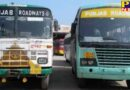 corona virus havoc government and private bus service stopped in punjab