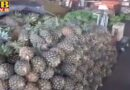 Maksudan which sells 50 tonnes of pineapple and seasonal fruits, has become a trouble for the bazar Jalandhar