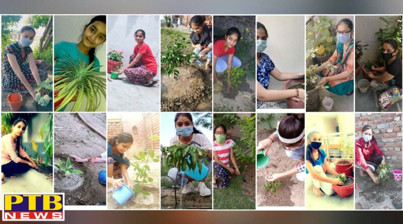 KMV Organises Van Mahotsav Week Students Organises Tree Plantation Drives for Environment Conservation