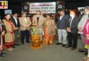 National Voters' Day 2021 Celebrated at HMV College Jalandhar