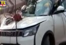 Uncontrolled high speed hit pole in Chandigarh The pole broke and fell on the car Punjab